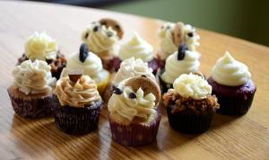 Mini Cupcake Assortment