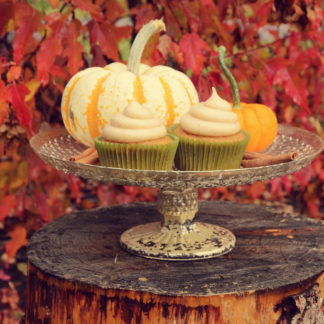cinnamon pumpkin cupcake, cream cheese icing