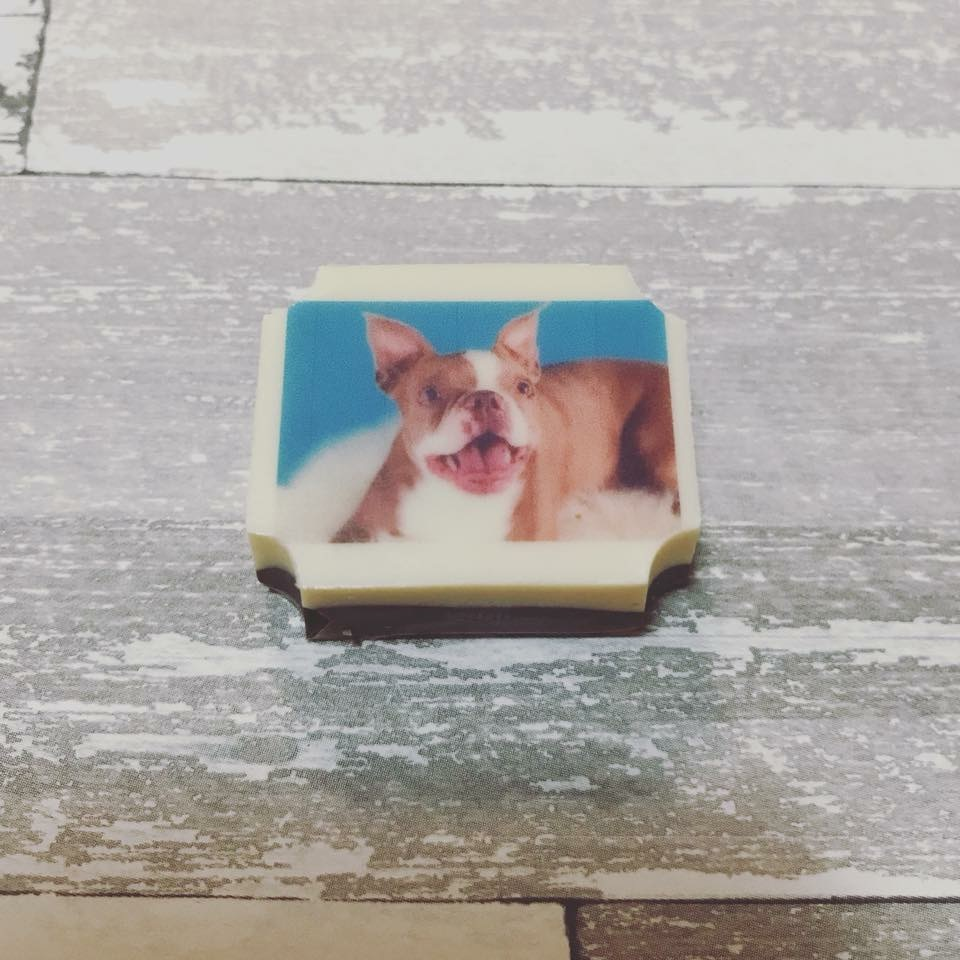 custom printed chocolate, celebration, personalized favor